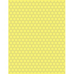 (EF-HCB-048TU)Teresa Collins - Honeycomb