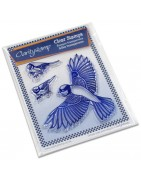 Stamp Clear Claritystamp